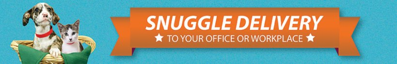 Office-Snuggles-banner-021